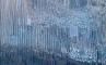 Скалы Лос Органос, фото №10