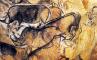 Носороги?, фото №6