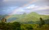 Леса кайя Миджикенда, Кения, фото №1